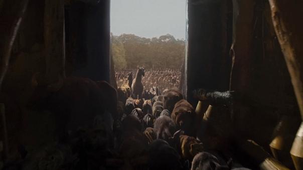 Noah-2025-HD-screencaps
